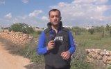 Haber Sunarken Yüzüne Bomba İsabet Eden Muhabir