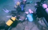 500 Yıllık Esmeralda Gemisinin Hazine Değerindeki Enkazı