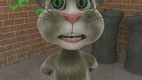 Kedi - İllede Aşk