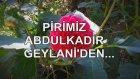Pirimiz Abdulkadir Geylani'den...