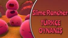 Slime Rancher : Türkçe Oynanış / Bölüm 17 - Altın Slime Plortu!