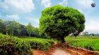 En Güzel 100 Hd Doğa Resmi : Dünyanın Enleri ?