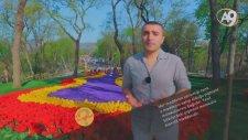 Bitkilerde Renk Tonu Nasıl Oluşur? | A9 Tv
