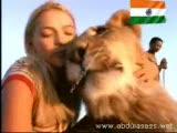 kızın aslanlarla harika dostluğu