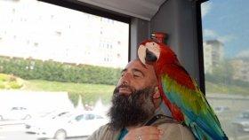 Allah Diyen Papağan Metrobüs Yolcularını Hayrete Düşürdü