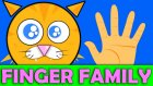 Cat Finger Family New Song | Baby Song | Finger Family