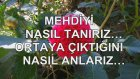 MEHDİ'Yİ NASIL TANIRIZ, ORTAYA ÇIKTIĞINI NASIL ANLARIZ...