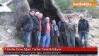 7 Asırlık Çınar Ağacı Tarihe Tanıklık Ediyor