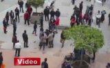 Liseli Kızlar Meydan Muhaberesi  Bolu