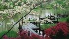 Rahatlatıcı Müziği 3 SAAT | Zen Garden | Spa, Meditasyon, Terapi Uyku Müziği