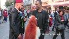 Taksim'de Kınalı Koyunla Gezen Adam