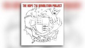 PJ Harvey - Chain Of Keys