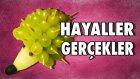Meyvelerden Kirpi Nasıl Yapılır? - Hayaller Ve Gerçekler - Yap Yap