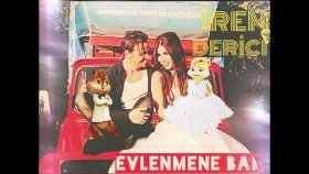 Alvin ve Sincaplar - Evlenmene Bak