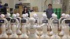 Beethoven'ı Seslendiren Robot Sürüsü