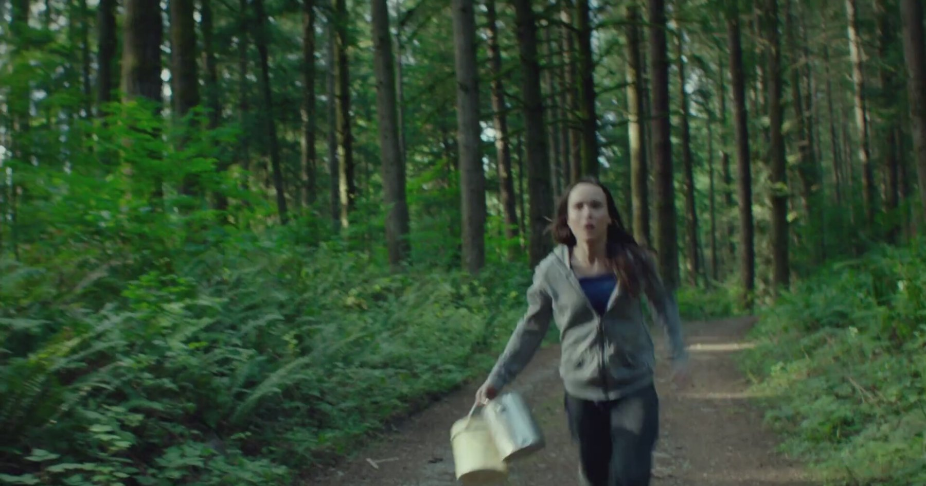 into the forest After premiering at tiff in 2015, the first into the forest trailer has arrived, teasing the apocalyptic thriller starring ellen page and evan rachel wood.