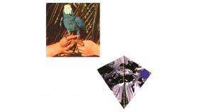 Andrew Bird - Saints Preservus