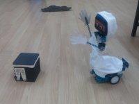 Hacı Robot - Bingöl