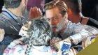Brad Pitt Hayranını Ezilmekten Kurtardı