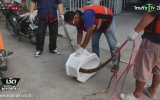 Tuvalette Piton Saldırısı  Tayland