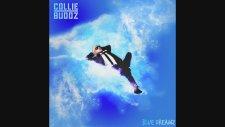 Collie Buddz - Go Hard (Audio)
