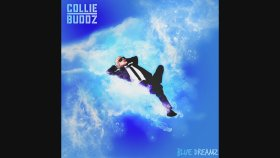 Collie Buddz - Pressure (Audio)