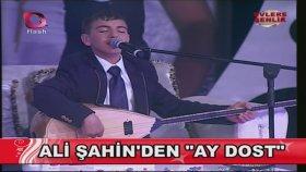 Ali Şahin- Ay Dostum