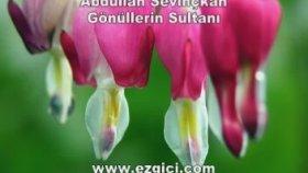 Abdullah Sevinçkan - Gönüllerin Sultanı