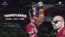 Alex Mica feat. W.Y.D. and Mr. Sax - Transylvania