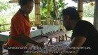 Luwak Bali Adası