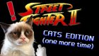 Street Fighter - Kedi Edition