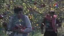 Ağanın Elmalarını Çalan Sefil Bilo (Restorasyonlu)