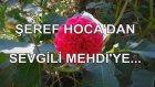 Şeref Hoca'dan Sevgili Mehdi'ye...