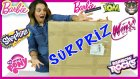 Barbie Fashionistas My Little Pony Shopkins Talking Tom | Dev Sürpriz Oyuncak Kutusu | EvcilikTV