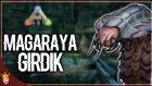 Mağaradaki Böcekler | Ark Türkçe Multiplayer | Bölüm 13 | Oyun Portal