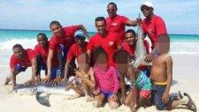 Turistlerin Fotoğraf Çektirmek İçin Denizden Çıkardığı Köpekbalığı Öldü