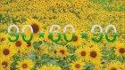 Ajdar - 90 - 60 - 90 (2016) Yepyeni Şarkısı