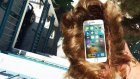 iPhone 6s'i Donald Trump Peruğuyla Atmak