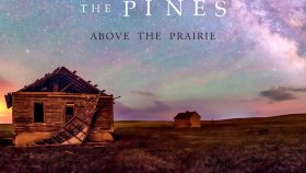 The Pines - Sleepy Hollow
