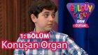 Güldüy Güldüy Çocuk 1.Bölüm, Konuşan Organ Skeci