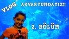 Günlük Vlog # 17 İstanbul Akvaryum Gezimizin 2.Bölümü Dev Akvaryumlar Ve Antartica Buzları