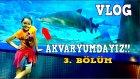 Vlog # 18 İstanbul Akvaryum Da Dev Balıklar Ve Liberty Batığı İle Devam Ediyoruz 3.Bölüm