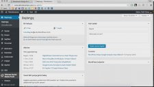 Wordpress'e Google Analytics Nasıl Eklenir