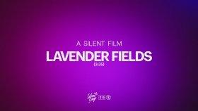 A Silent Film - Lavender Fields