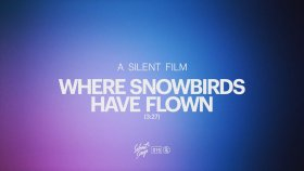 A Silent Film - Where Snowbirds Have Flown