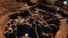 Dünyanın En Büyük Karınca Şehri : Dünyanın Enleri ?