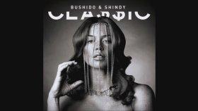 Bushido & Shindy - Über Alles (Dj Q Remix)
