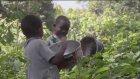 Afrika'da Sinekler Burger Yapıp Yiyen İnsanlar