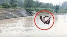Nehre Balıklama Atladı Öldü