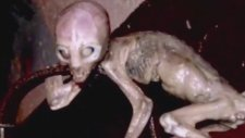 51 Bölge Hakkinda Bilmediğiniz Gerçekler Area 51